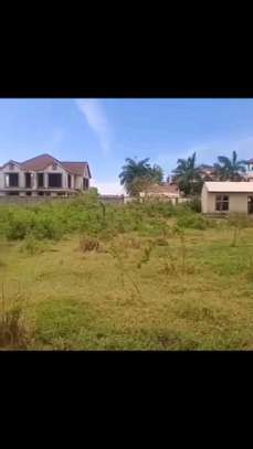 1600 sqm Plot with Title Deed at MBWENI Malindi. image 1