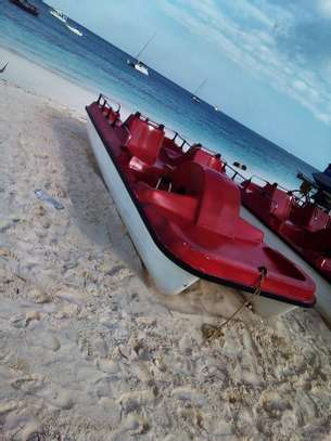 Pedalo Watercraft for sale image 4