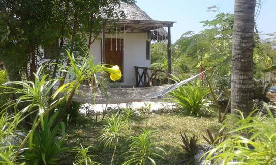 A family cottage for rent in Zanzibar