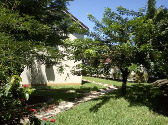 3bed room house masaki $2000pm image 9