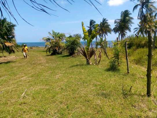Beach plot for sale in kigamboni. image 6