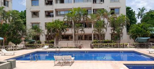 2 bedroom apart fully furnished oysterbay for rent image 8