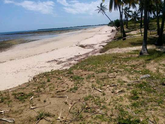 Beach plot for sale in kigamboni. image 9