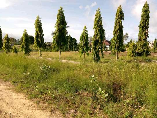 PLOT 4 SALE AT BUNJU BEACH MOGA.