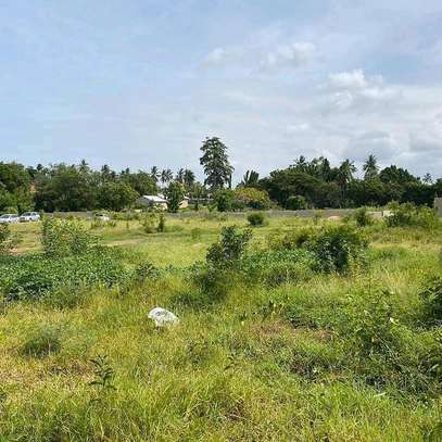 Plot for sale location sala sala image 1