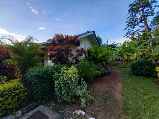 OYSTERBAY BUNGALOW FOR RENT image 14
