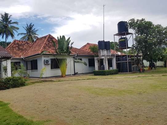 4 bed room stand alone house with big compound  for rent at mikocheni ridhiwani image 11