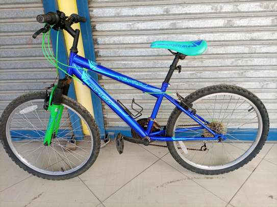 For sale Mountain bike MTB image 1