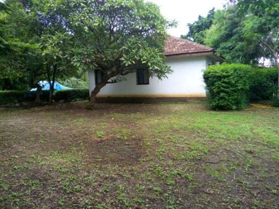 4bed houde at oyster bay $2000pm image 11