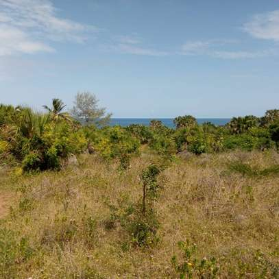 Beach plot for sale-Cheka Kigamboni image 3