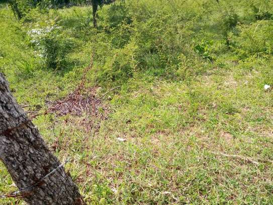 plot for sale at goba contena image 15