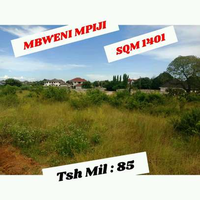 PLOT FOR SALE MBWENI MPIJI image 1