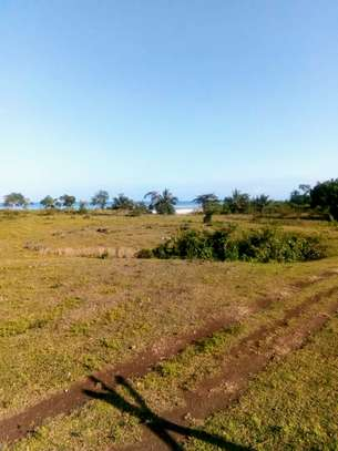 OCEANFRONT LAND FOR SALE IN PEMBA ISLAND-ZANZIBAR image 1