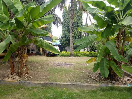 4 bed room big house with nice garden at mikocheni image 10