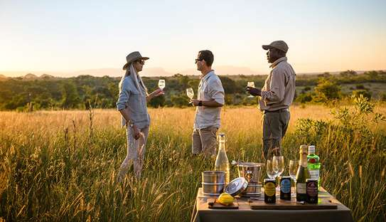 7 Day Tanzania Lodge Safari | One week safari Tanzania image 1