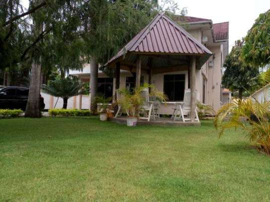 4bed house along main rd kawe beach $1300pm i deal for office cum residance image 10