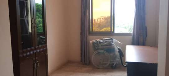2 bedroom apart fully furnished oysterbay for rent image 4