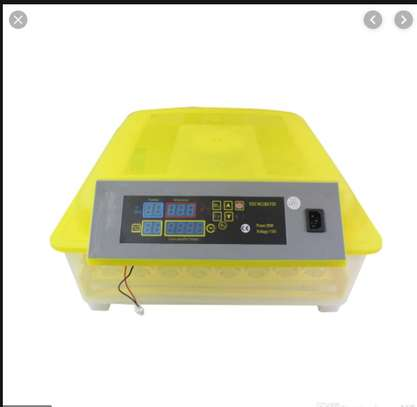 Automated 48 Eggs Incubator for Sale.