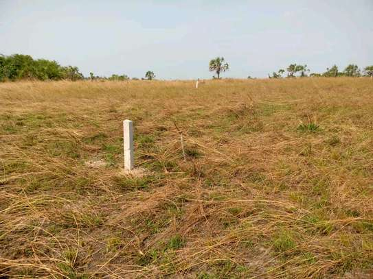 RESIDENTIAL PLOTS FOR SALE AT KIGAMBONI-GOLANI image 2
