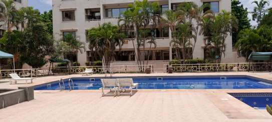 2 bedroom apart fully furnished oysterbay for rent image 12