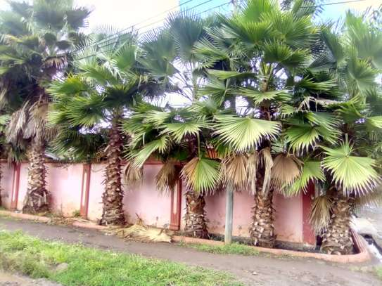 4 Bedroom House Njiro Arusha, discounted price