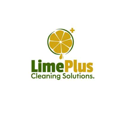 LimePlus Cleaning Solution