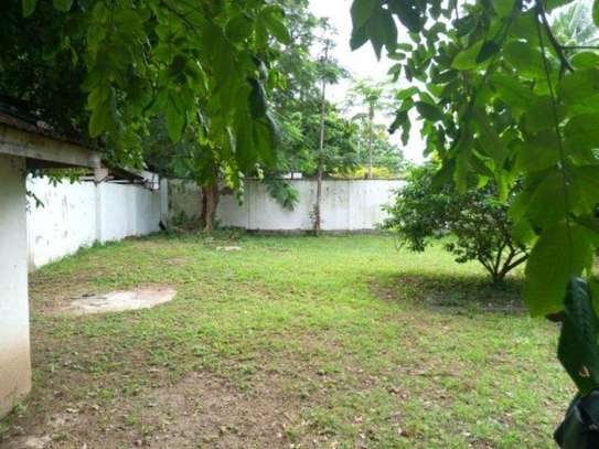 4bed house at oyster bay $2000pm z image 11