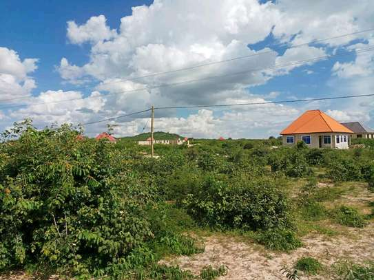 Nice plot for sale at dodoma Michese. image 4