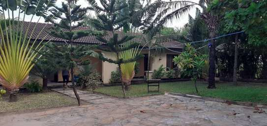 1 bed room house for rent tsh 350000 at mikocheni A