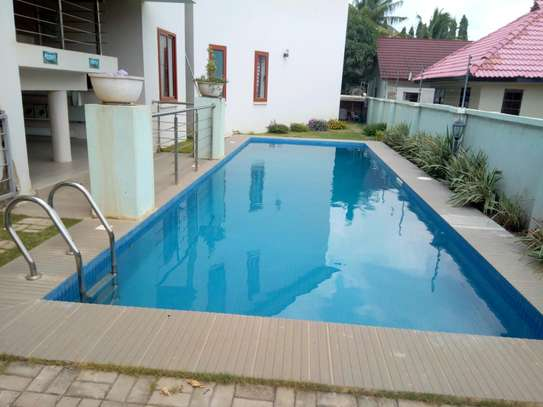 FULLY FURNISHED APARTMENT FOR RENT AT UNUNIO BEACH DSM.