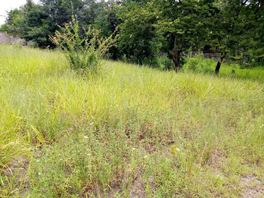 plot for sale goba near msakuzi road. image 8