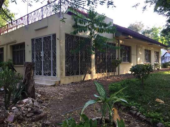 4 bed room house for rent at oyster bay $1500pm image 1