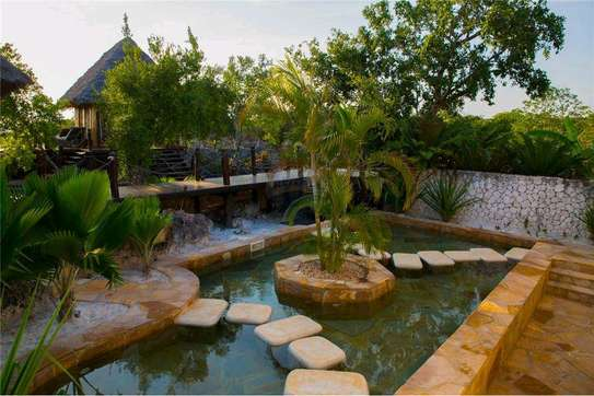 Luxury Wellness and Resort Retreat for SALE image 3