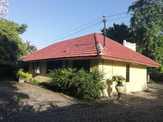 3 BED ROOM HOUSE FOR RENT AT ADA ESTATE AND DEAL FOR OFFICE $1000PM image 3