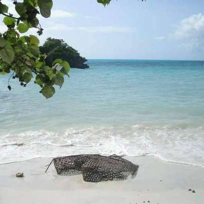Lovely Beachfront Property on Menai Bay, Unguja Ukuu, Zanzibar image 2