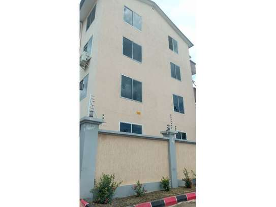 1 bed room excutive apartment for rent at mikocheni image 2