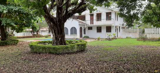 4 Bedrooms Large House For Rent In Oysterbay image 3