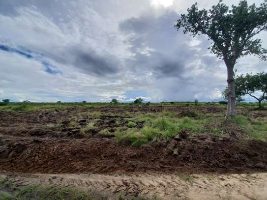 3 acre plot for sale at Bagamoyo image 4