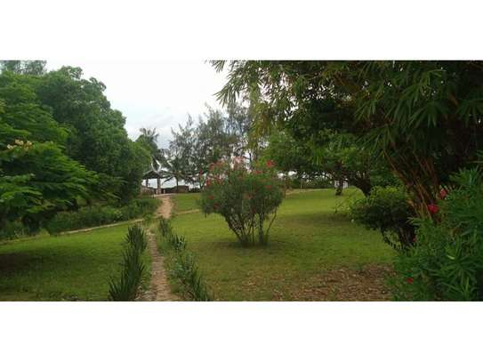 amaizing beach house for rent at ras kilomoni $1200pm image 5