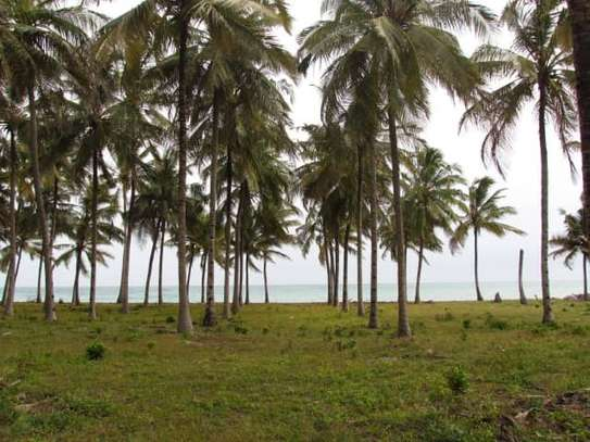 beach plot for sale at kigamboni 11 acres image 4