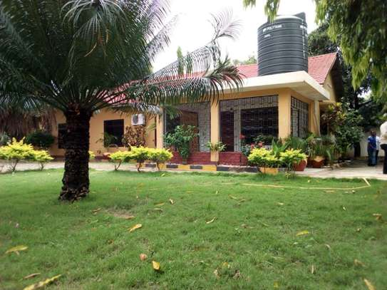 4bed house at mikocheni a tsh 1,500,000,