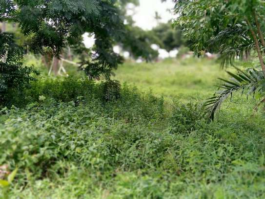 plot for sale with house for sale at segerea image 4
