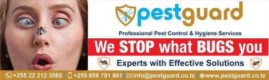 Pest Guard & Fumigation