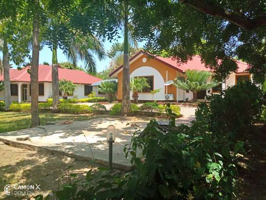 3 bed room villa house for rent at oyster bay image 4
