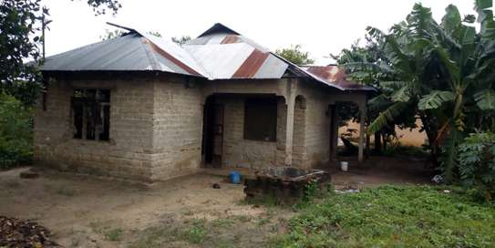 3 Bdrm House in Tanga image 1