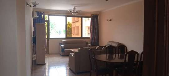 2 bedroom apart fully furnished oysterbay for rent image 2