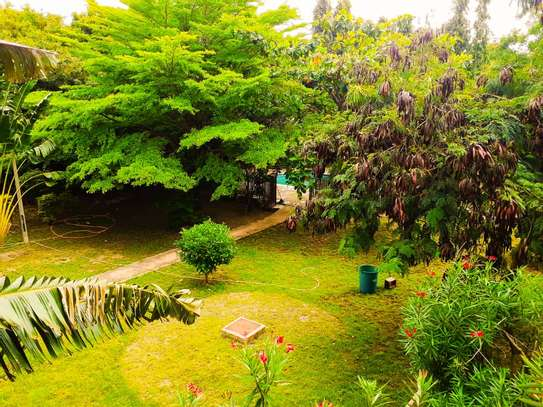 4 Bedroom Standalone House In Masaki With A Mature Garden image 1