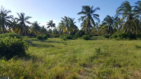 beach plot for sale at mtwara mjini with acre 57 image 2