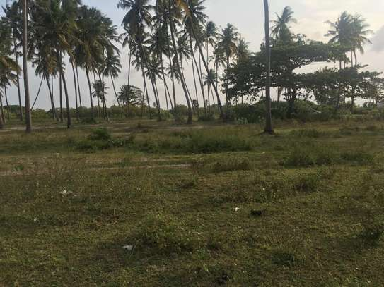 Beach plot for sale (Tanga)