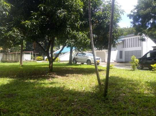 4bedroom house in Ada estate to let $1500 image 6